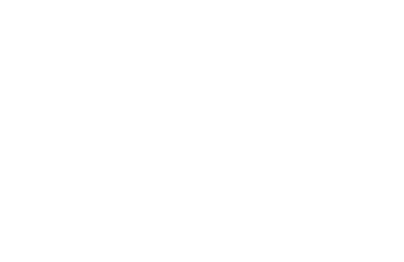 VSI Worldwide